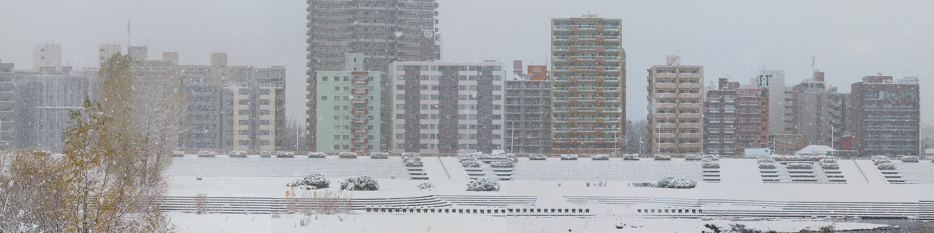 SNOW(2015)